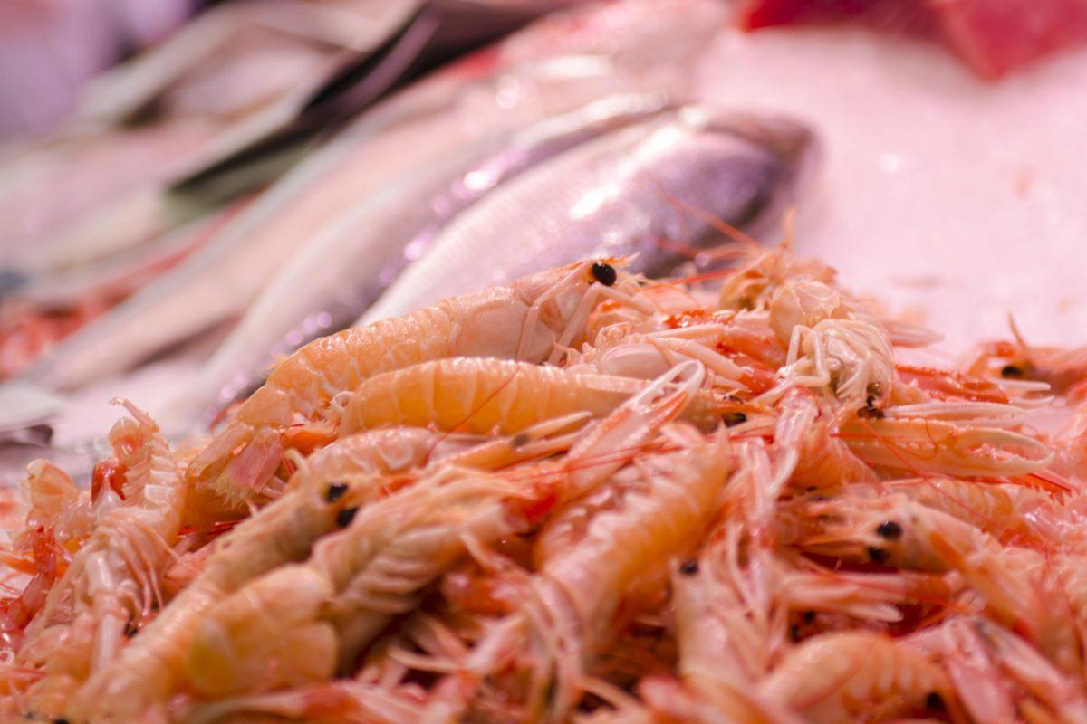 Del Mercado Central a nuestra cocina